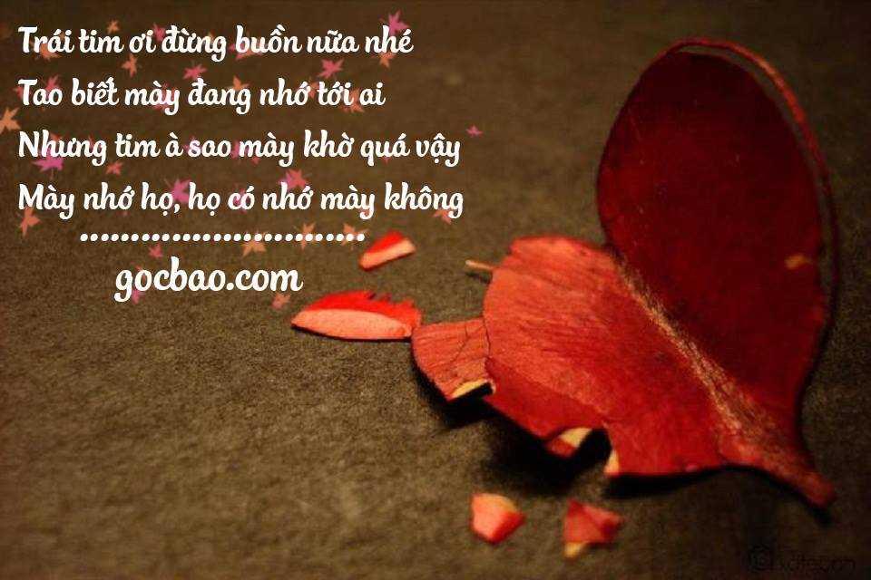 những câu nói hay nhất về tình yêu